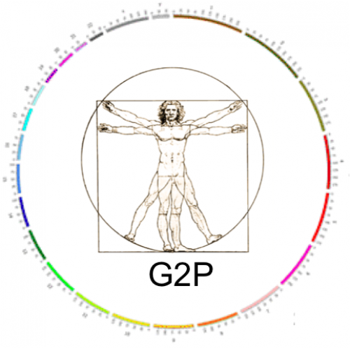 G2P (Gene2Phenotype)